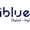 iBlue Consulting